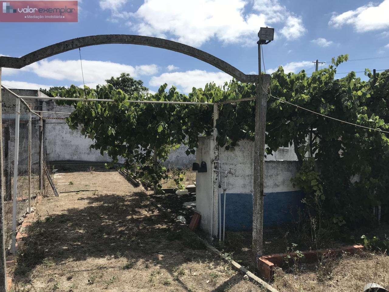 Terreno para comprar, Quinta do Anjo, Setúbal - Foto 14