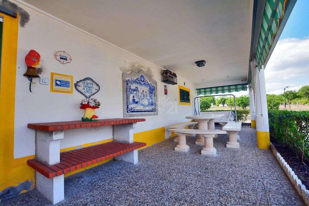 Quintas e herdades para comprar, Branca, Coruche, Santarém - Foto 6