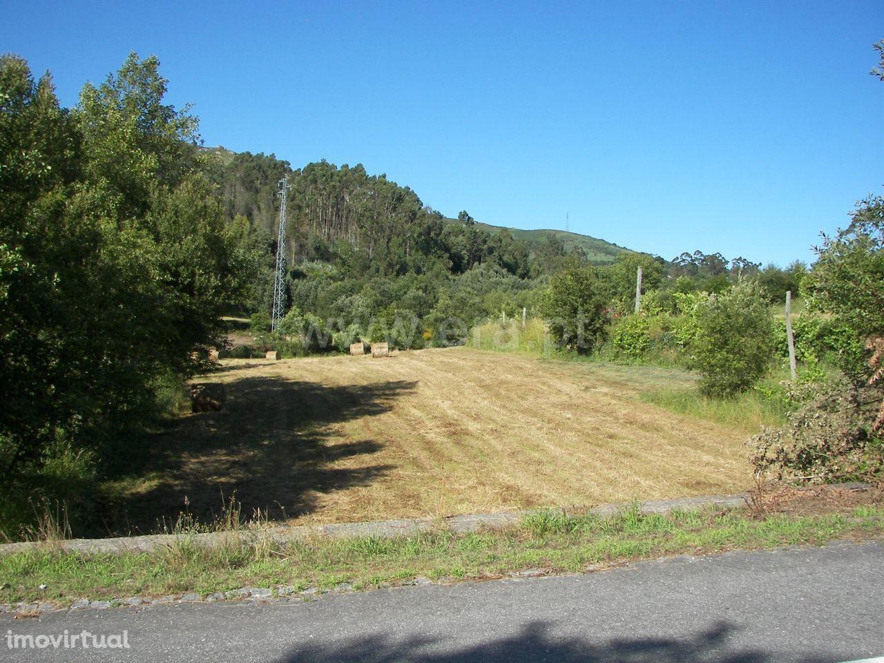 Terreno em Queimadela com 11.000 m2