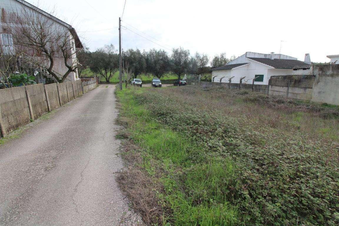 Terreno para comprar, Leiria, Pousos, Barreira e Cortes, Leiria - Foto 4