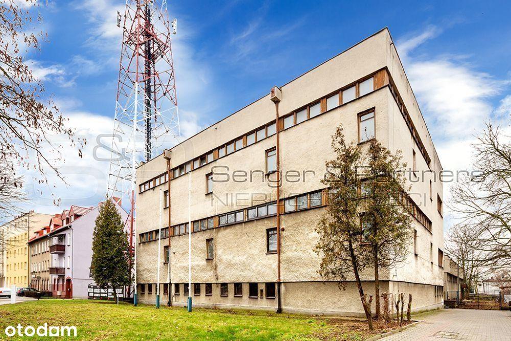 Lokal użytkowy, 1 846 m², Szamotuły
