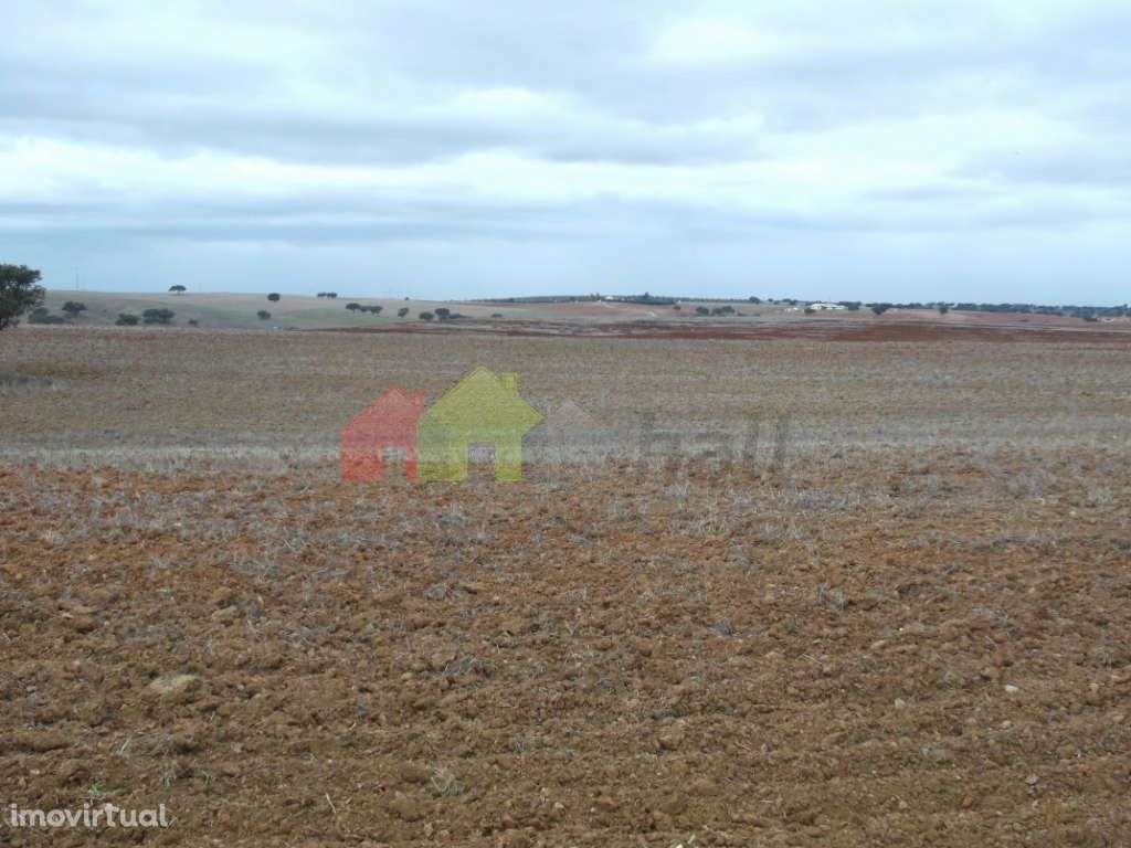 Quintas e herdades para comprar, Albernoa e Trindade, Beja - Foto 4