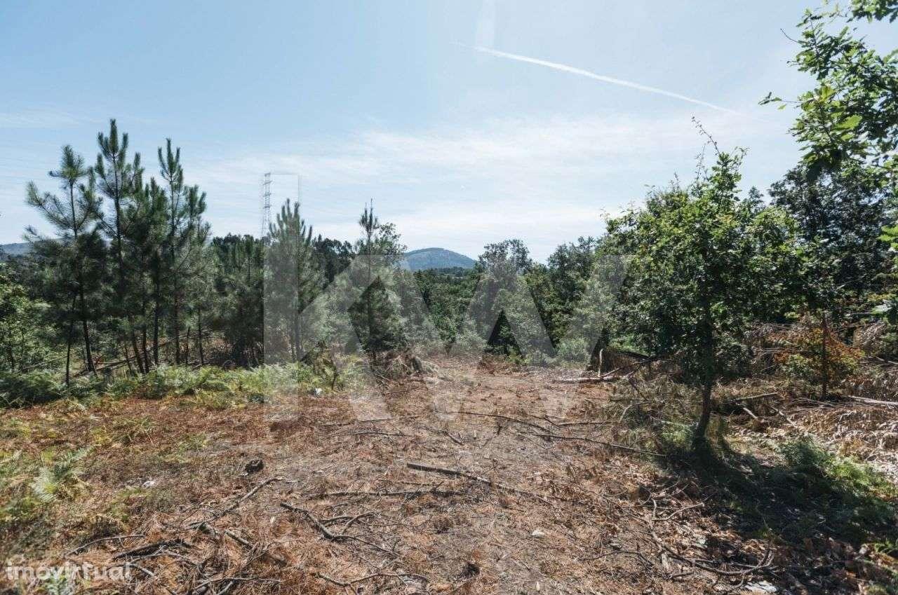 Terreno para comprar, Águas Santas e Moure, Póvoa de Lanhoso, Braga - Foto 5