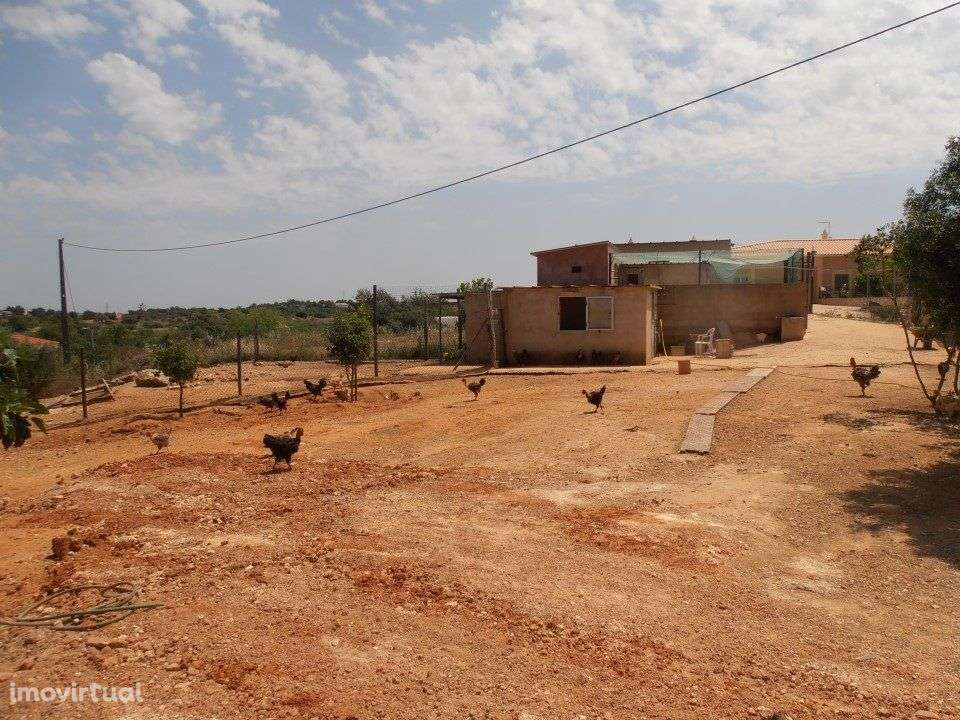 Quintas e herdades para comprar, Estômbar e Parchal, Lagoa (Algarve), Faro - Foto 39