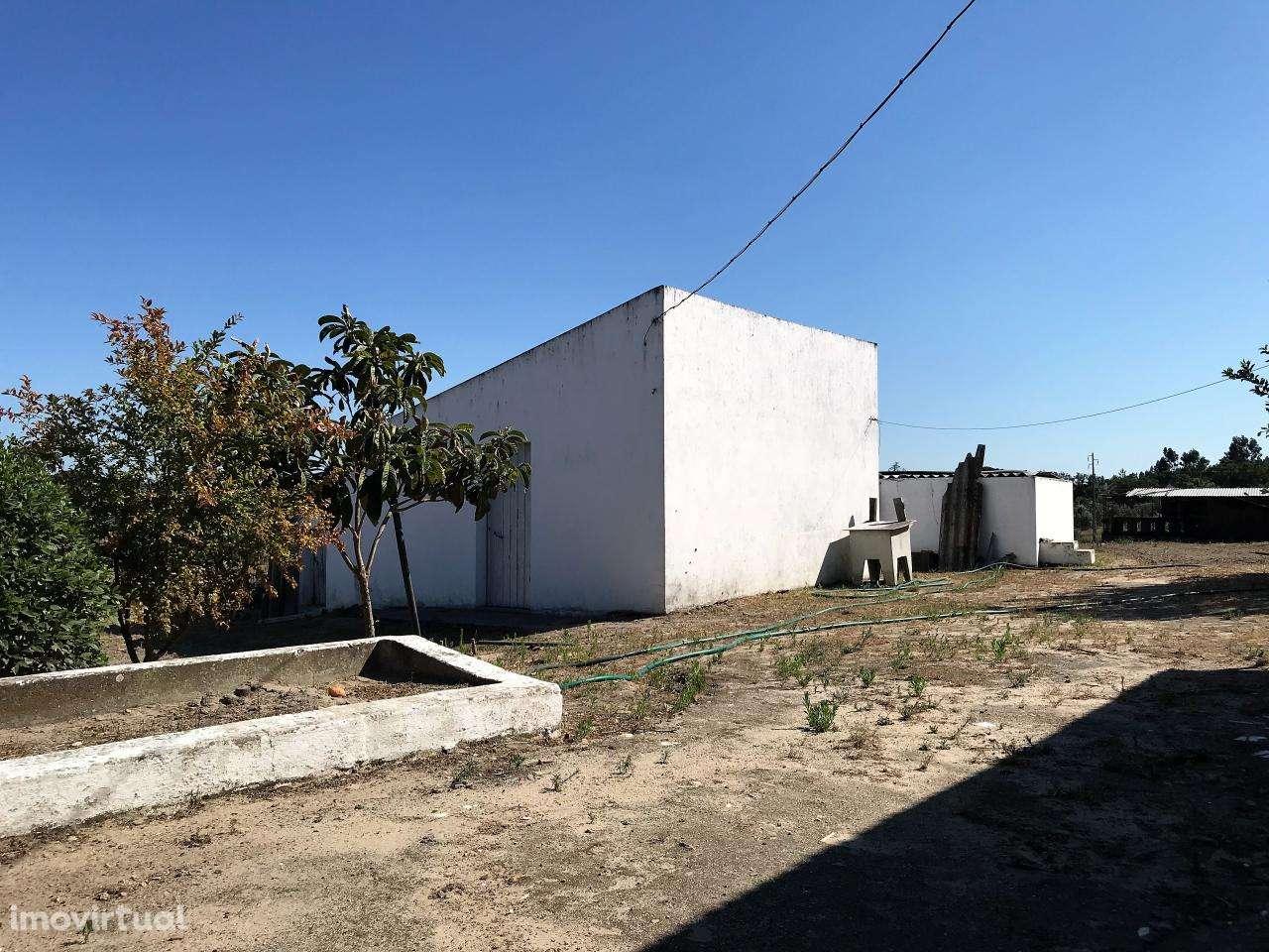 Quintas e herdades para comprar, Cortiçadas de Lavre e Lavre, Montemor-o-Novo, Évora - Foto 13