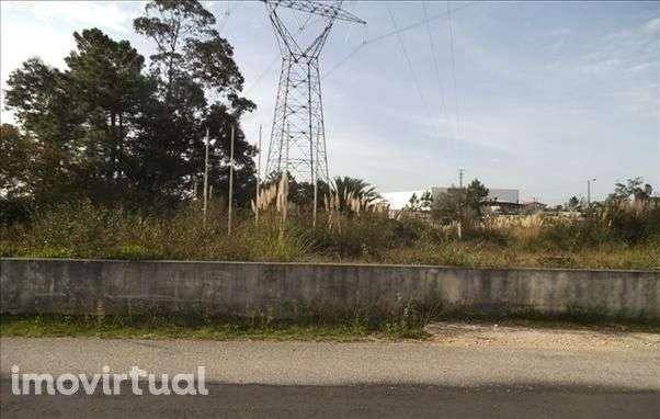 Terreno para comprar, Belazaima do Chão, Castanheira do Vouga e Agadão, Águeda, Aveiro - Foto 3