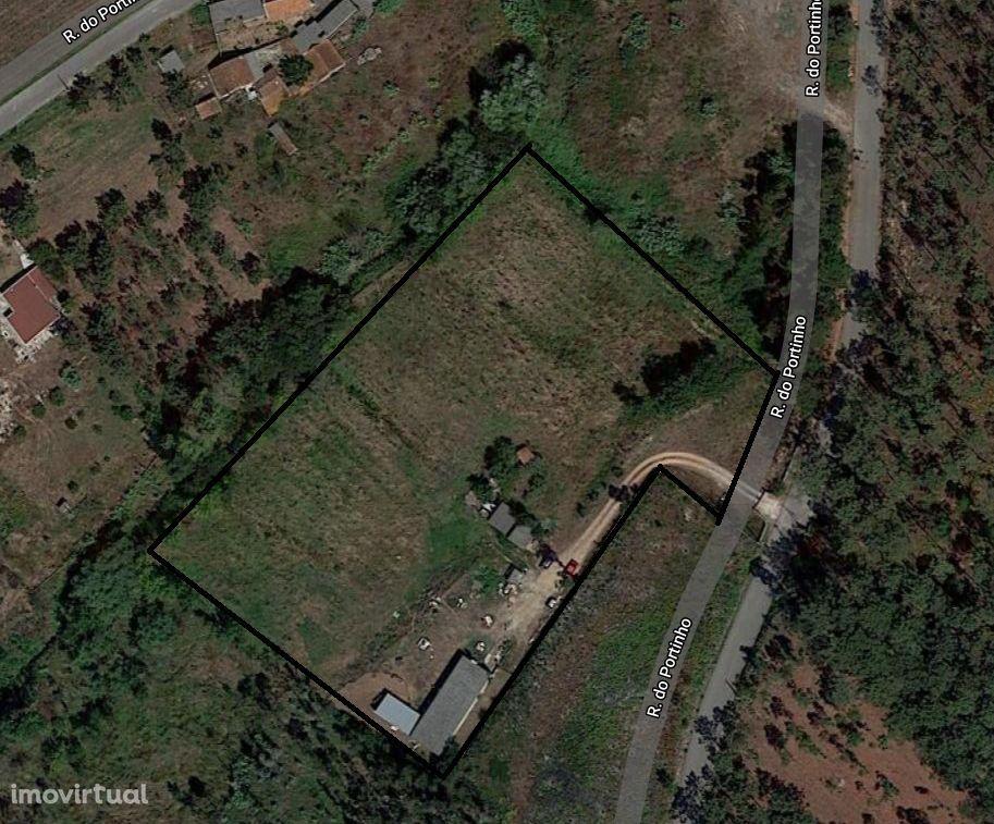 Quinta com eucaliptos, terreno de cultivo e armazém na Garcia