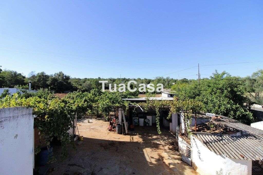 Quintas e herdades para comprar, Moncarapacho e Fuseta, Olhão, Faro - Foto 16