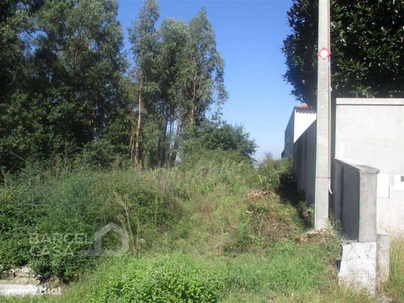Terreno para comprar, Várzea, Braga - Foto 3