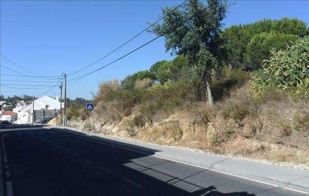 Terreno para comprar, Coruche, Fajarda e Erra, Santarém - Foto 3