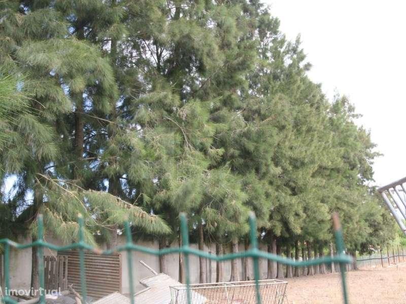 Terreno para comprar, Pinhal Novo, Setúbal - Foto 39
