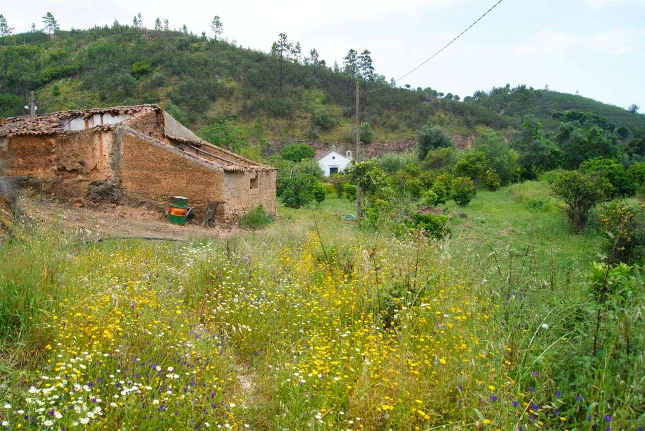 Terreno para comprar, Alferce, Monchique, Faro - Foto 28