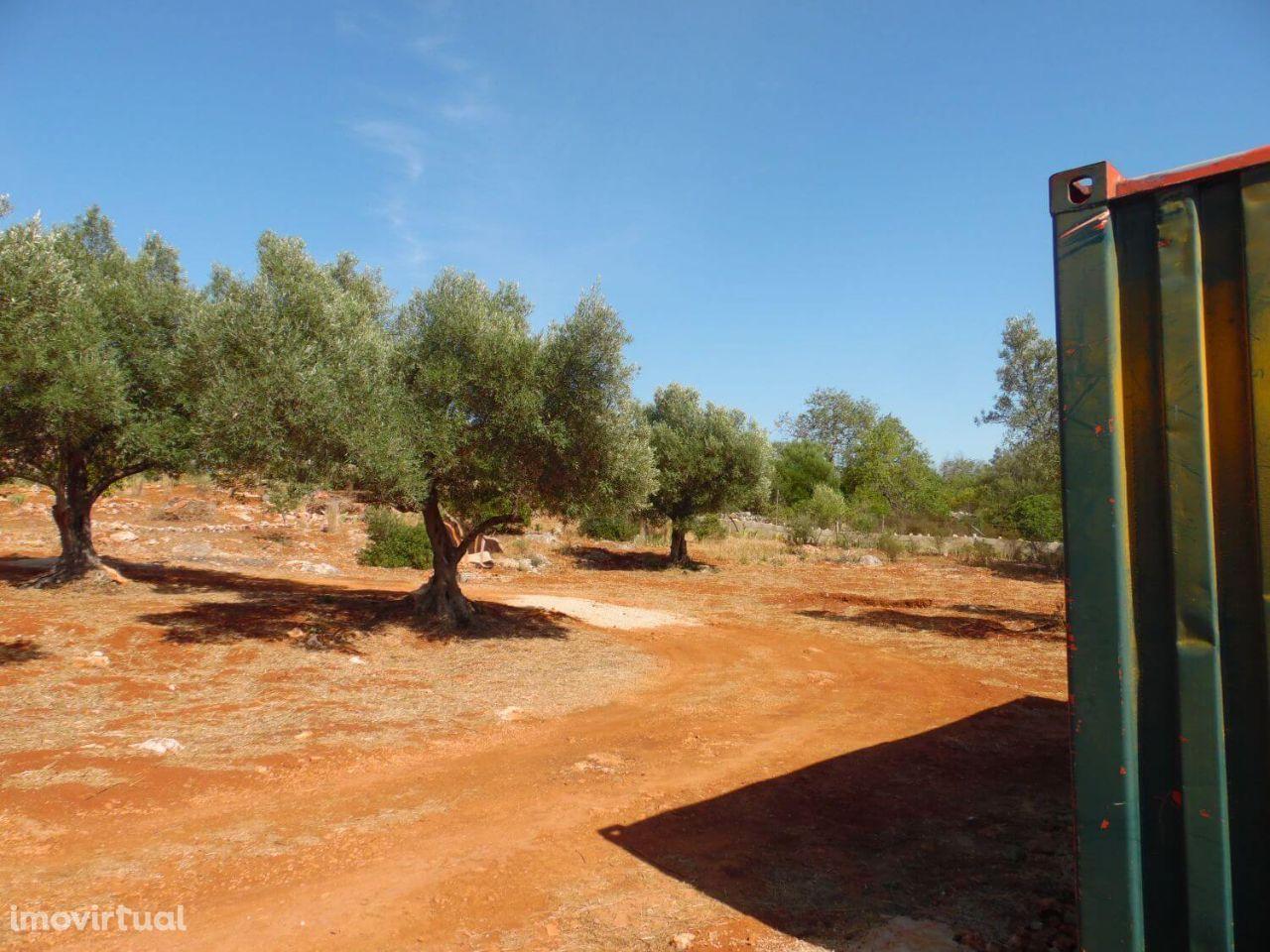 Terreno para comprar, Alte, Loulé, Faro - Foto 7