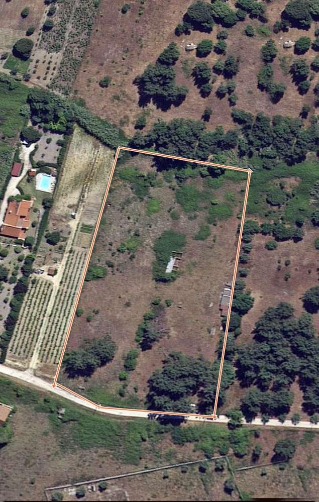 Terreno para comprar, Cartaxo e Vale da Pinta, Santarém - Foto 3