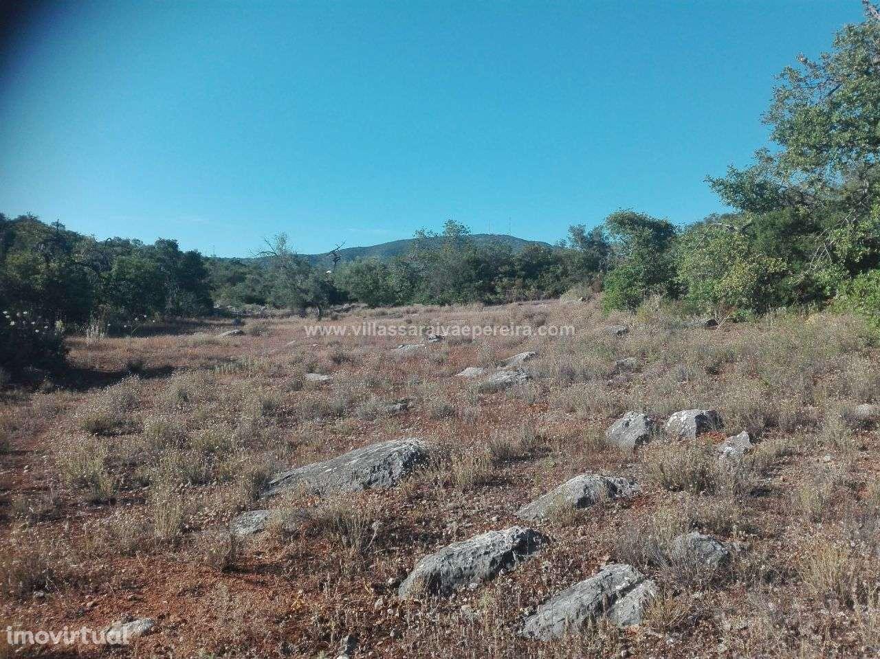 Terreno para comprar, Moncarapacho e Fuseta, Olhão, Faro - Foto 9
