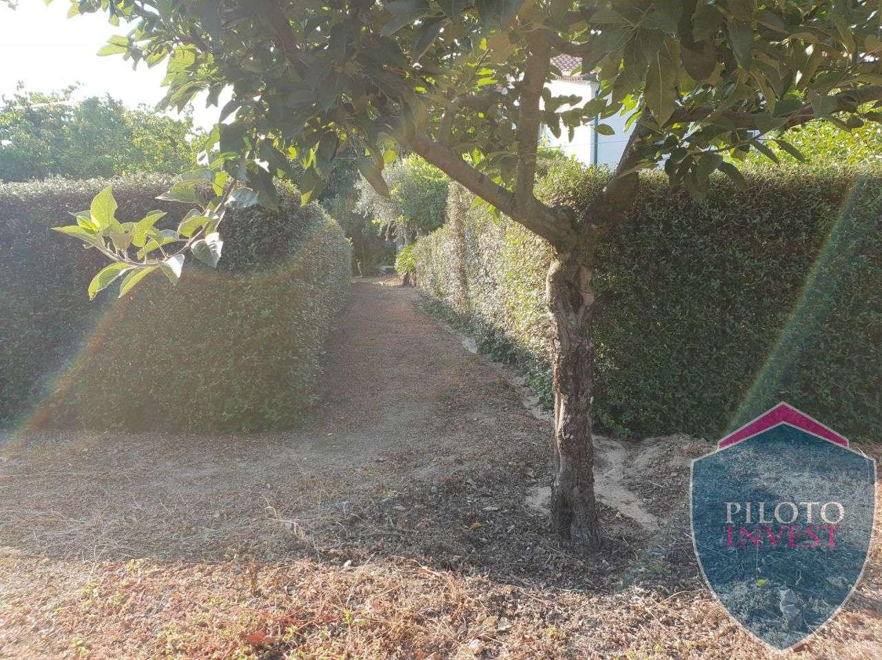 Quintas e herdades para comprar, Povolide, Viseu - Foto 26