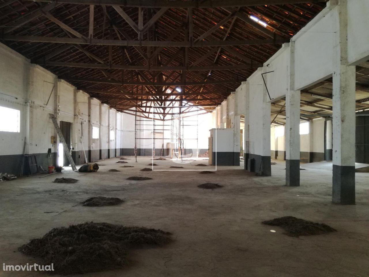Terreno para comprar, Ermidas-Sado, Santiago do Cacém, Setúbal - Foto 9