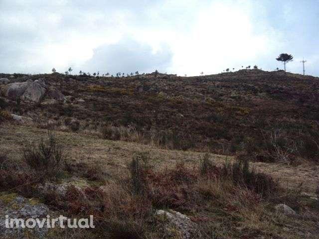 Terreno para comprar, Avessadas e Rosém, Marco de Canaveses, Porto - Foto 2