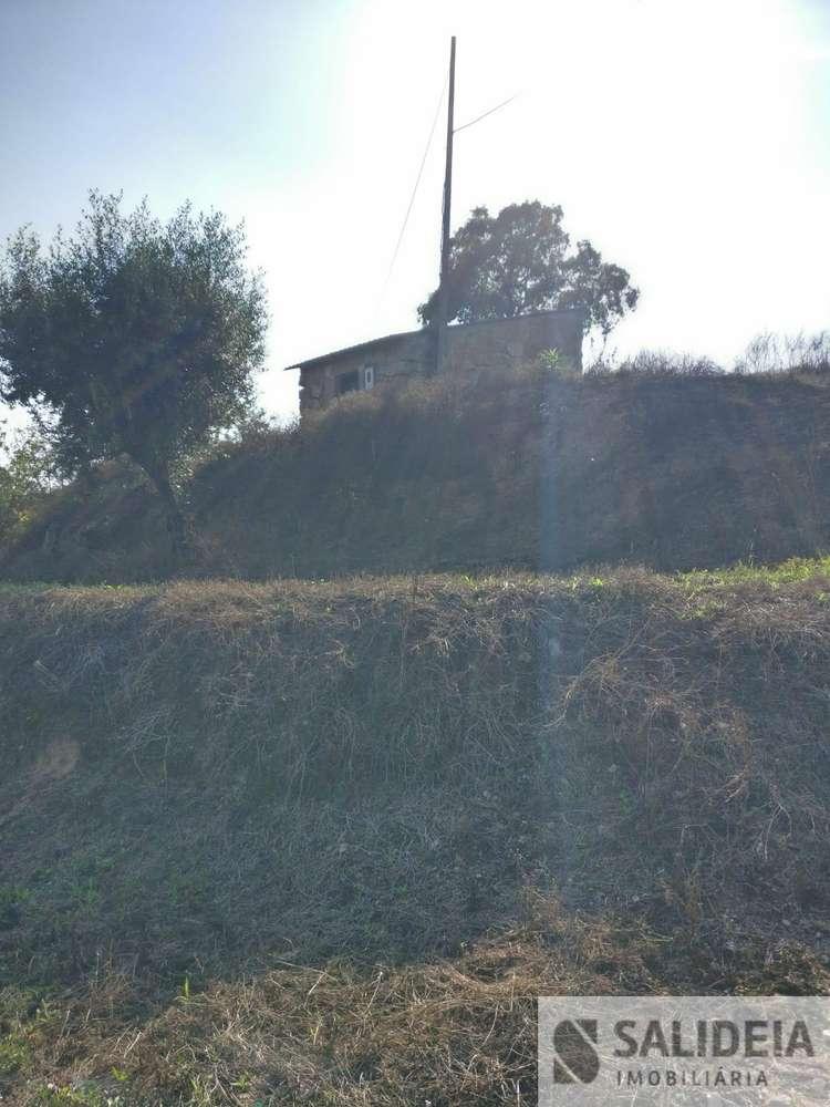 Terreno para comprar, Currelos, Papízios e Sobral, Viseu - Foto 3