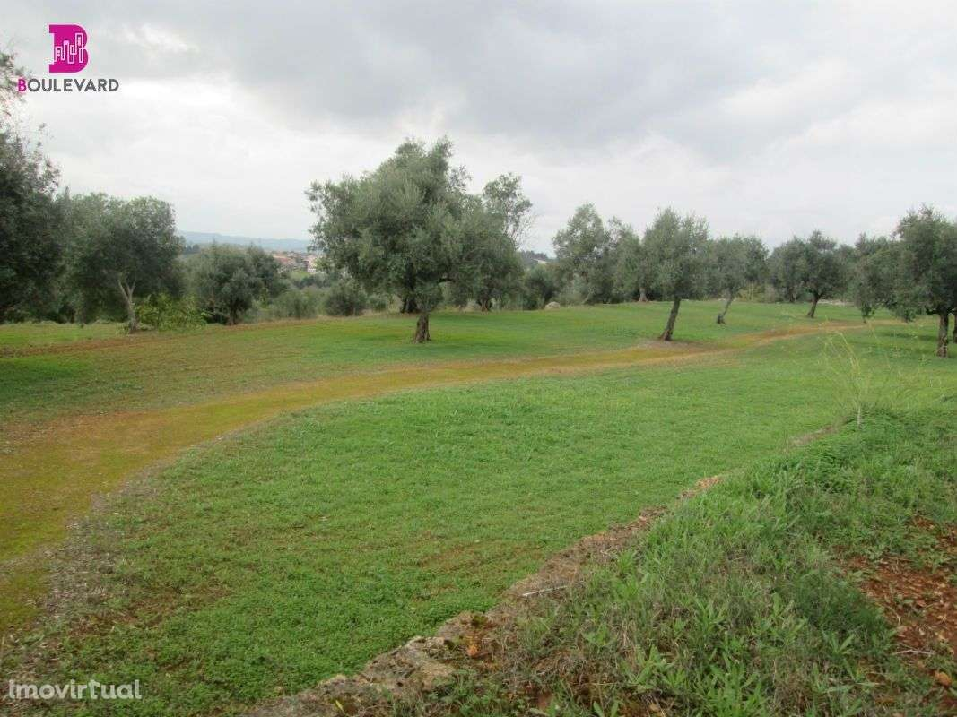 Terreno para comprar, Cernache, Coimbra - Foto 2