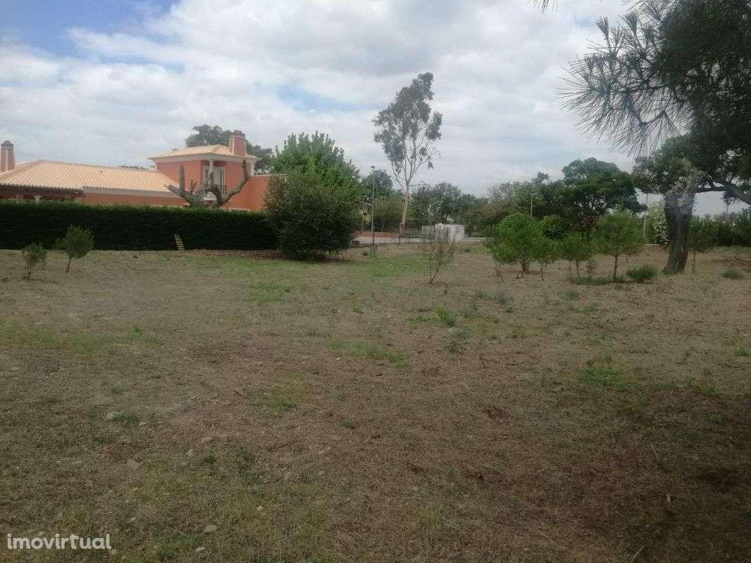 Terreno para comprar, Santo Estevão, Benavente, Santarém - Foto 2