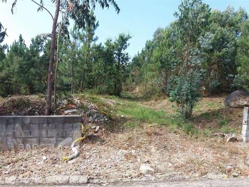 Terreno para comprar, Milhazes, Vilar de Figos e Faria, Braga - Foto 3