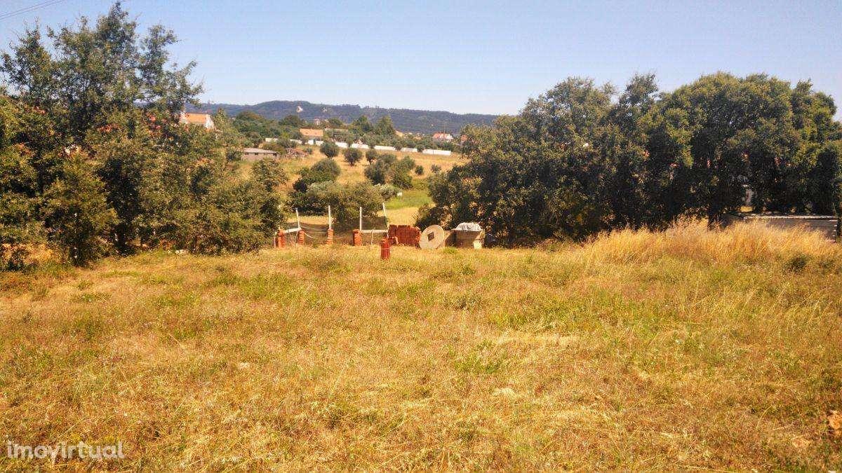 Terreno para comprar, Casais e Alviobeira, Santarém - Foto 5