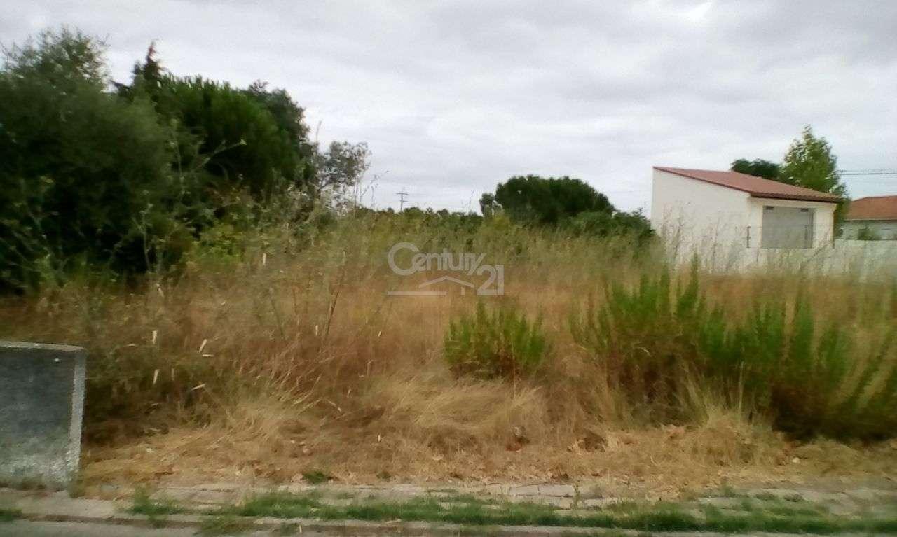 Terreno para comprar, Riachos, Santarém - Foto 1