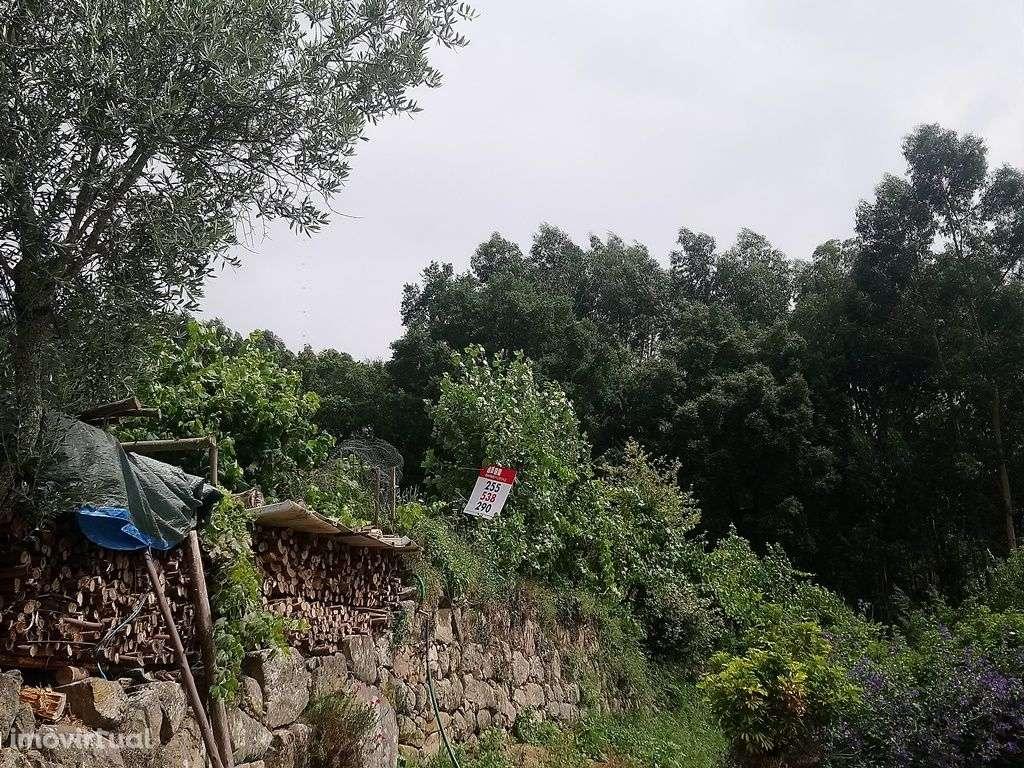 Terreno para comprar, Bem Viver, Porto - Foto 8
