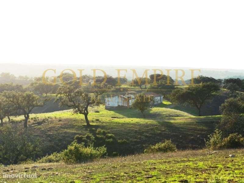 Quintas e herdades para comprar, Serpa (Salvador e Santa Maria), Serpa, Beja - Foto 25