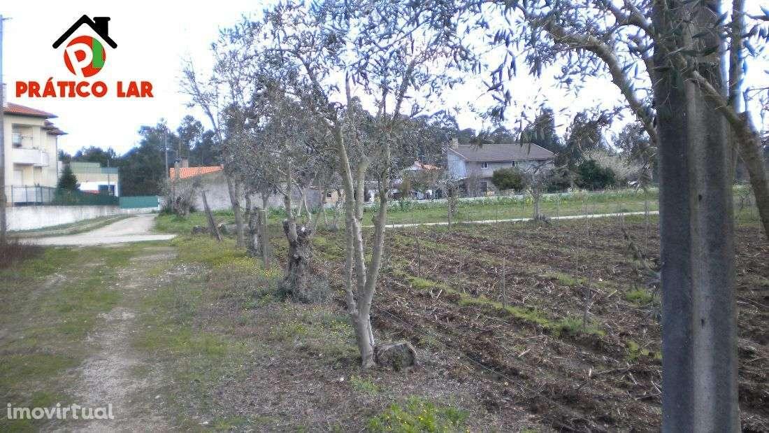 Terreno para comprar, Valongo do Vouga, Aveiro - Foto 6