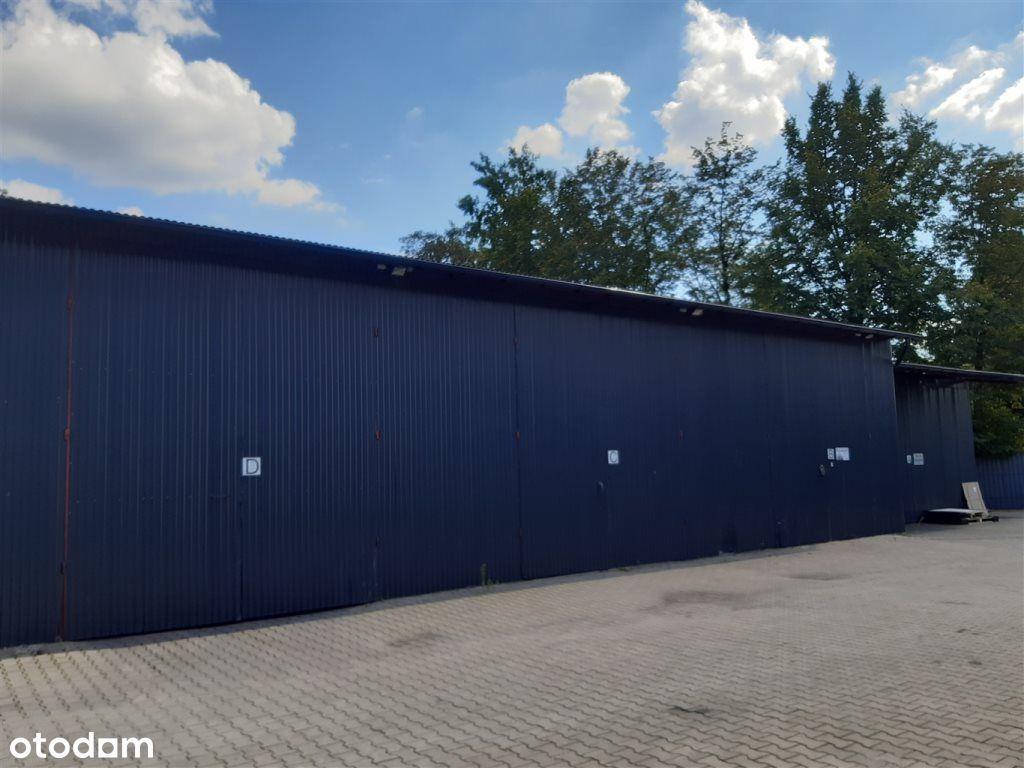 Hala/Magazyn, 65 m², Kobiór