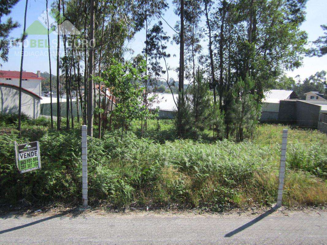 Terreno para comprar, Lobão, Gião, Louredo e Guisande, Aveiro - Foto 1