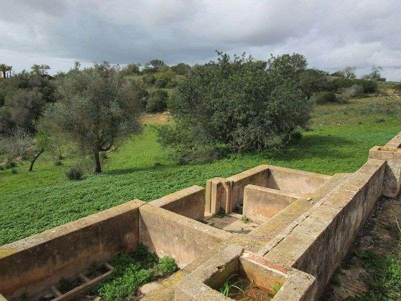 Quintas e herdades para comprar, Estômbar e Parchal, Faro - Foto 3