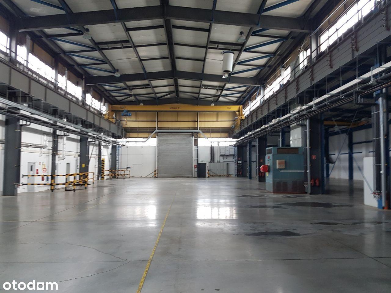 Hala prod-mag ok. 3000 m2 z socj-biur ok. 900 m2