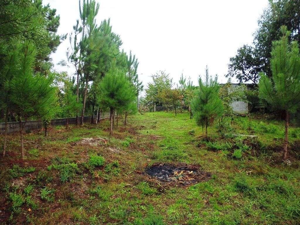 Terreno para comprar, Monsul, Braga - Foto 8