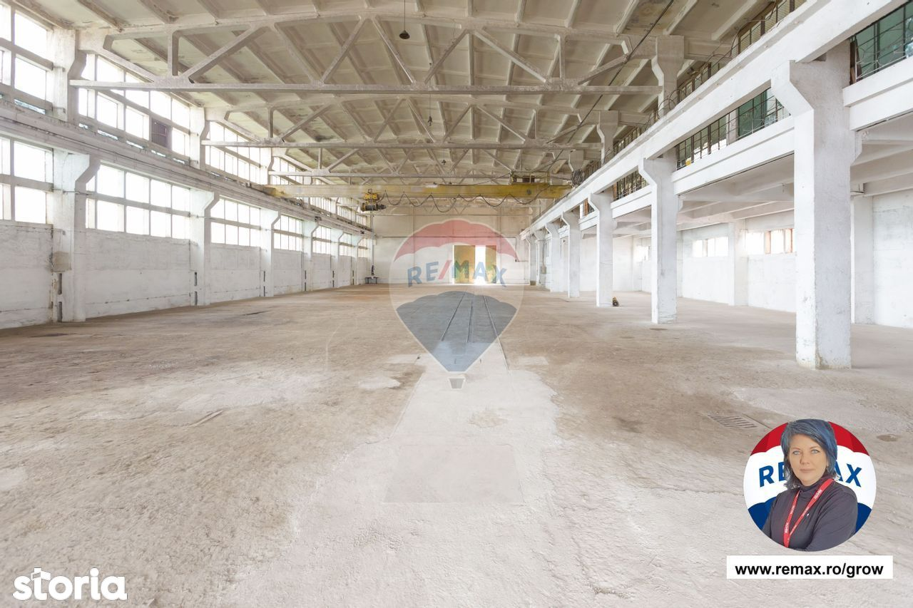 inchiriere hale industriale si sediu administrativ in Racaciuni la E85
