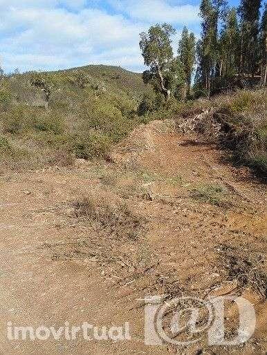 Terreno para comprar, Marmelete, Monchique, Faro - Foto 2