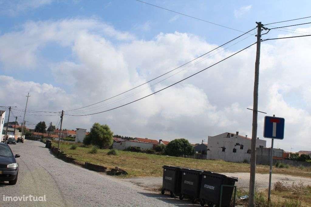 Terreno para comprar, Perafita, Lavra e Santa Cruz do Bispo, Matosinhos, Porto - Foto 4