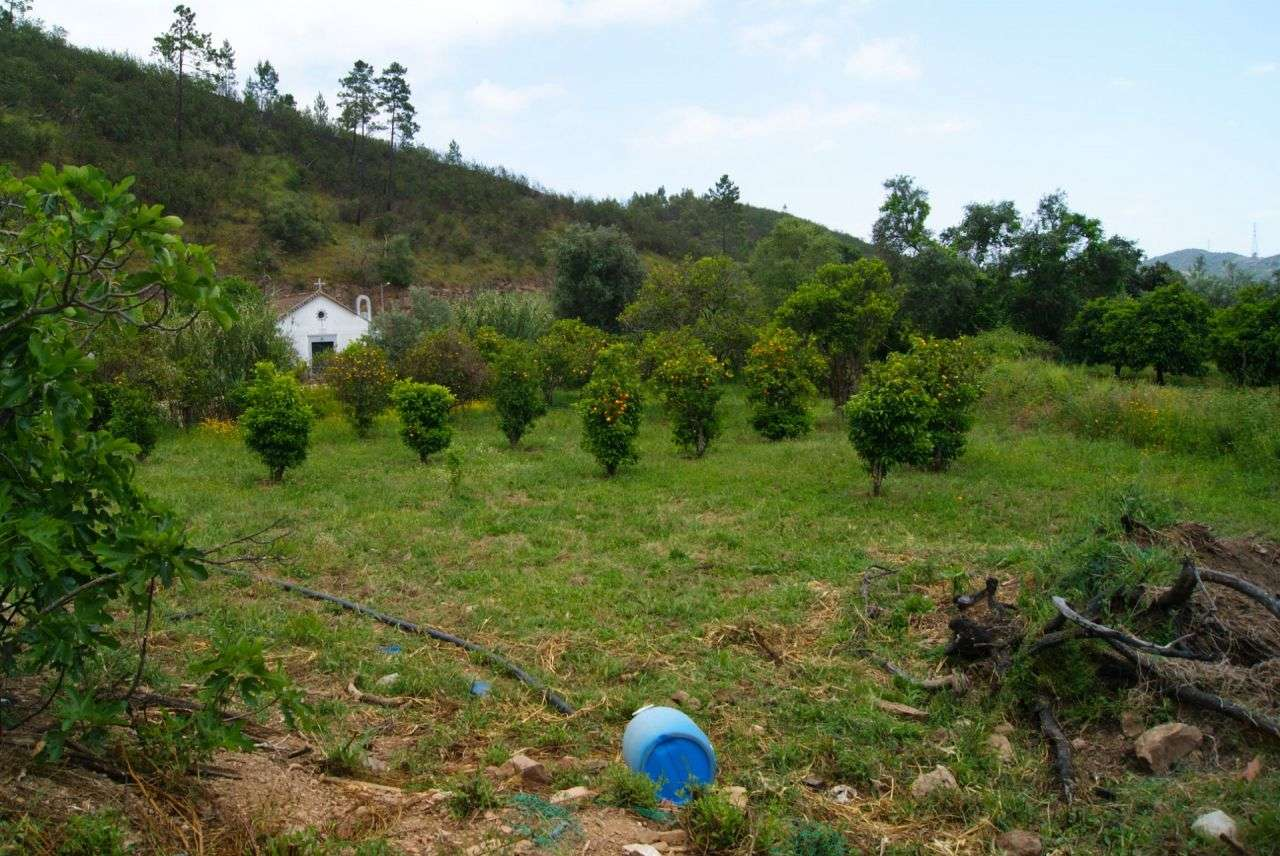 Terreno para comprar, Alferce, Monchique, Faro - Foto 14