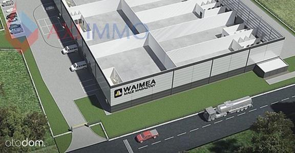 Hala/Magazyn, 883 m², Kajetany