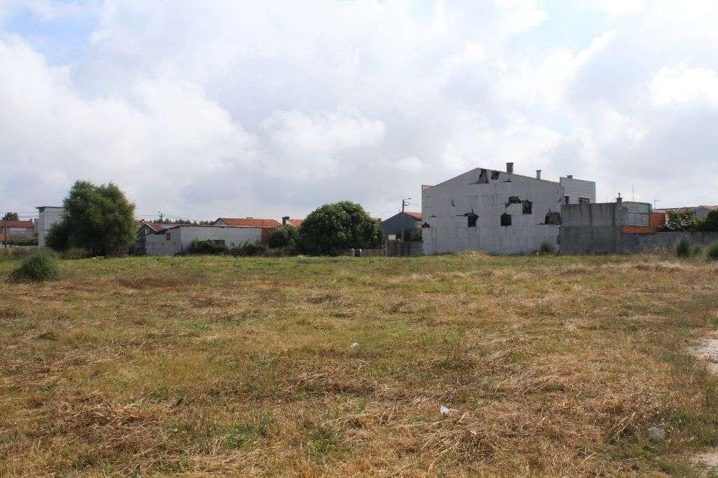Terreno para comprar, Perafita, Lavra e Santa Cruz do Bispo, Matosinhos, Porto - Foto 3
