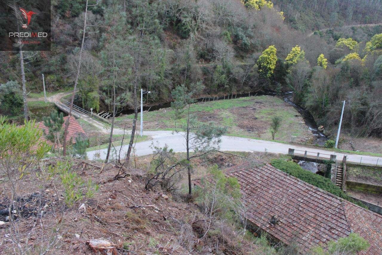 Quintas e herdades para comprar, Aguda, Figueiró dos Vinhos, Leiria - Foto 53