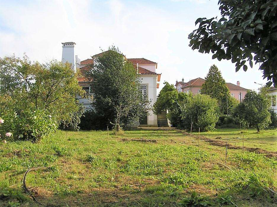 Quintas e herdades para comprar, Vila de Cucujães, Aveiro - Foto 4