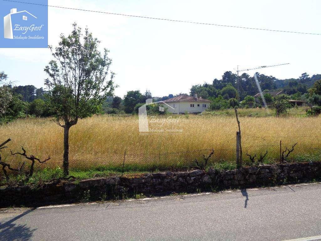 Terreno para comprar, Orgens, Viseu - Foto 2