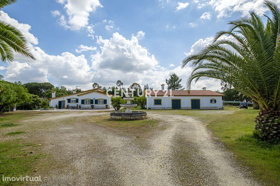 Quinta nas Faias-Pegões-Montijo com terreno de 15.845 m2