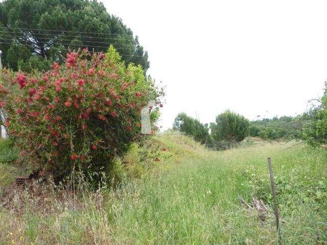Quintas e herdades para comprar, Martinchel, Abrantes, Santarém - Foto 27