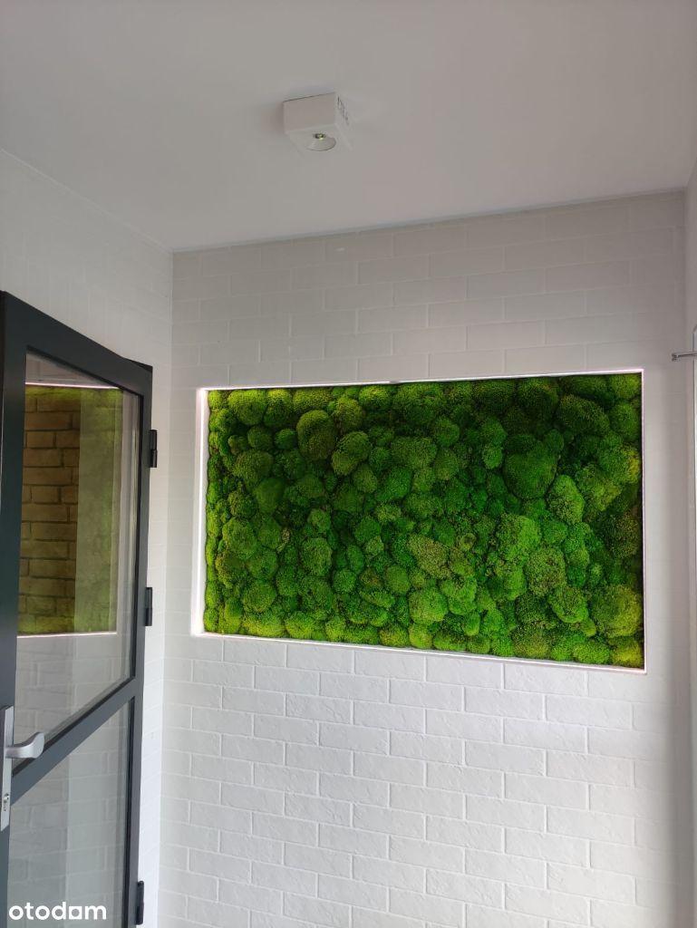 Komfortowe mieszkanie w bloku z windą-REZERWACJA