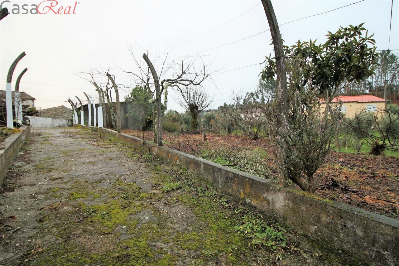 Quintas e herdades para comprar, Cumeada e Marmeleiro, Sertã, Castelo Branco - Foto 35