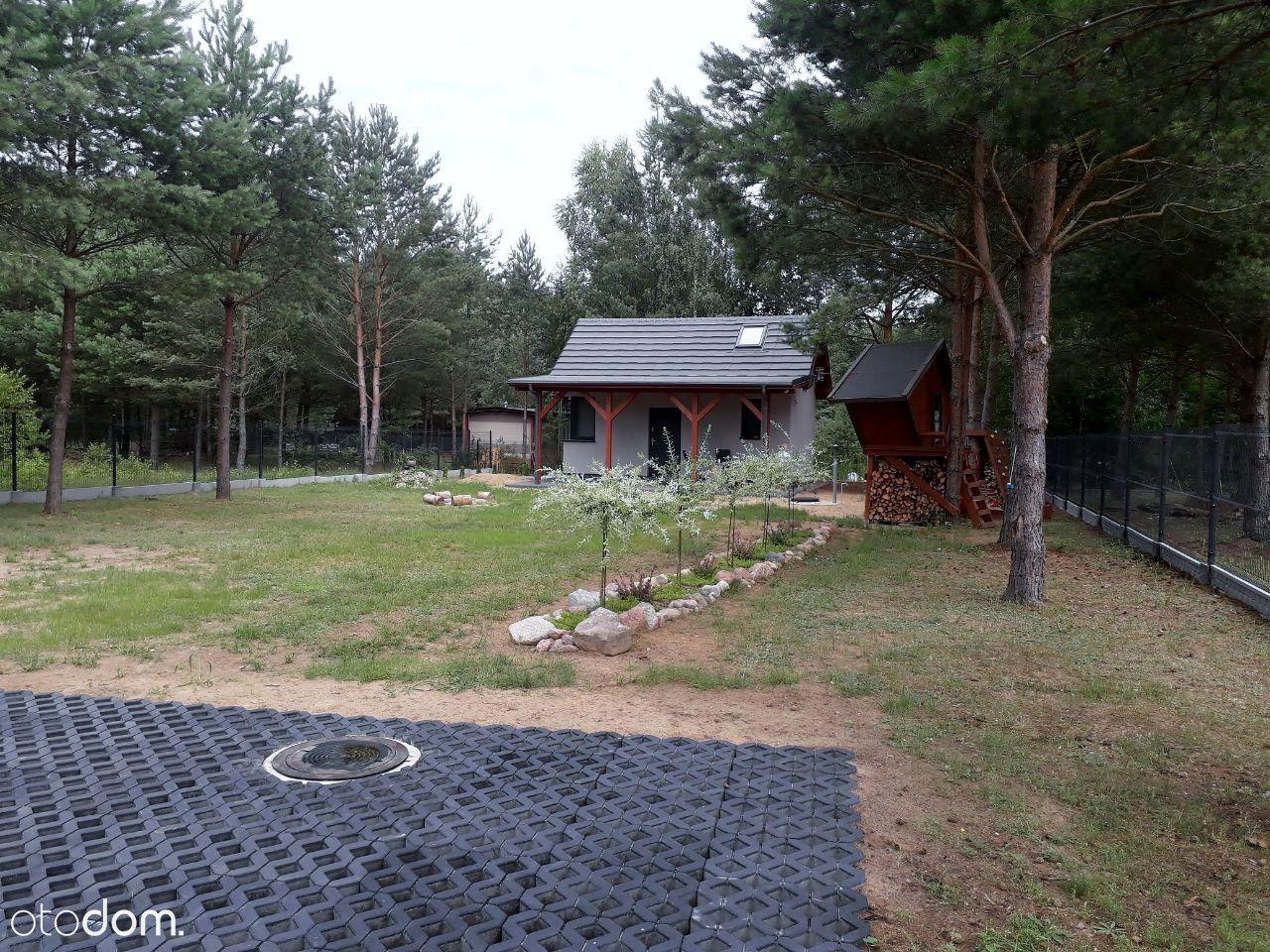 Działka - Huta - Cekcyn, linia brzegowa, jezioro